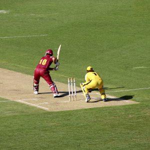 Cricket & Tennis Loam