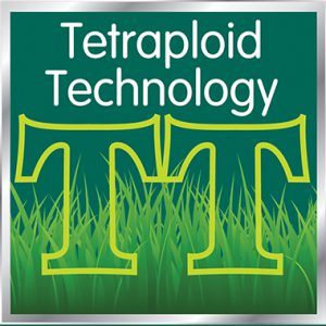 Tetraploid Technology