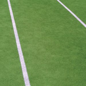 Synthetic Grass Paints