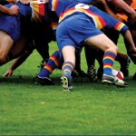 Grass Seed for Rugby Pitches
