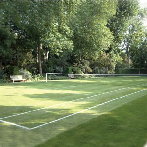 Grass Seed for Tennis Courts