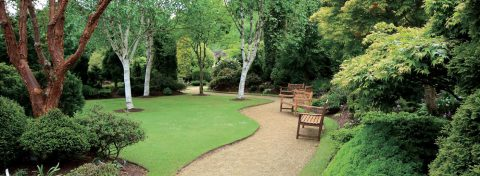 Products that enhance our landscape